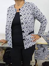 Пиджак женский размер 50,52,54,56,58,60