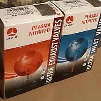 Клапаны ВАЗ 2101,2102,2103,2104,2105,2106,2107 AMP (впуск,выпуск 8 шт.) азотированные