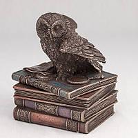 Шкатулка Veronese Сова на книгах 12 см 75511 веронезе статуэтка-шкатулка