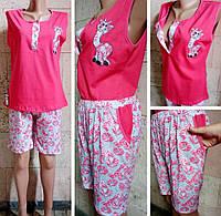 Комплект (пижама)  женская Жирафик трикотаж ,   купить