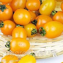 KS 3690 F1(КС 3690) насіння низькорослого жовтого черрі Kitano Seeds 1000 шт