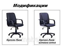 Кресло Лига Пластик Лаки Черный (AMF-ТМ), фото 3