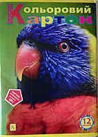 Картон цветной А4 12 листов