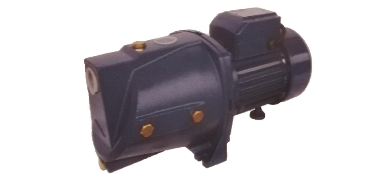 Электронасос самовысасывающий, струйно-центробежный серии JSWm  (0,75 кВт) ALBA