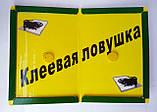 Клеевая ловушка книжка с приманкой от грызунов 21*32 TOMMCAT, фото 3