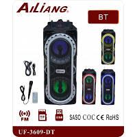Переносная акустика Ailiang UF-3609-DT караоке колонка с микрофоном