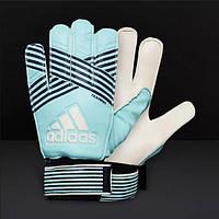 Перчатки для вратаря Adidas ACE TRENING