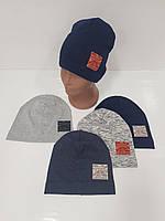 Детские демисезонные трикотажные шапки для мальчиков оптом, р.46-48, 50-52 Ala Baby (Польша), фото 1