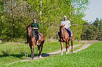 Прогулка на лошадях ЛЕТОМ
