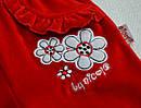 Детские велюровые штаны красные для девочки р. 68-86 см (Nicol, Польша), фото 2