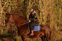 Прогулка на лошадях ОСЕНЬЮ, фото 1
