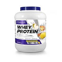 OstroVit, Протеин Whey Protein 2000 грамм