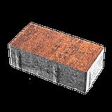 Колор Микс 6 (20х10) Гранат / Колор Мікс 6 (20х10) Гранат, фото 2