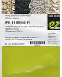 Ирен F1 500 шт семена сладкого перца Enza Zaden Голландия, фото 4