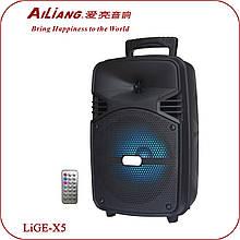 Активная акустика колонка Ailiang LiGE-X5