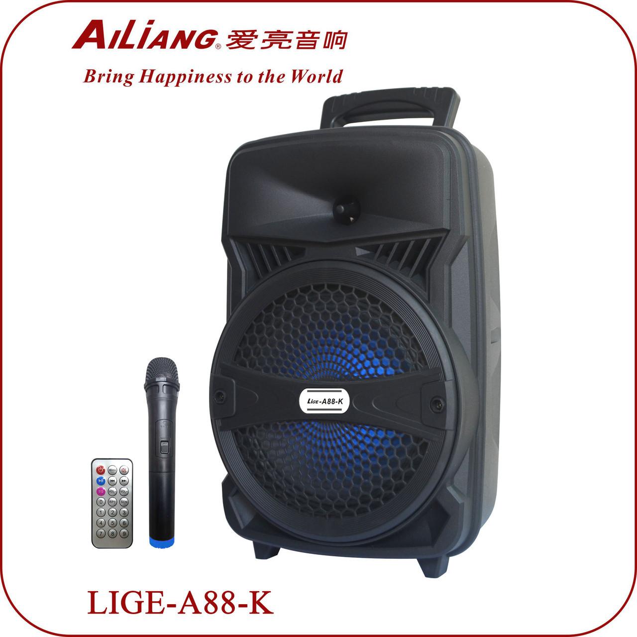 Акустическая система колонка Ailiang LiGE-A88-K