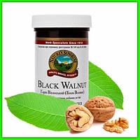 Антипаразитарный натуральний препарат Чорний горіх НСП (Black Walnut) NSP від глистів для дітей і дорослих США