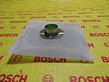 Фильтр топливный погружной бензонасос грубой очистки F066, фото 2