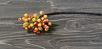 Ветка красно-оранжевых ягод премиум класса