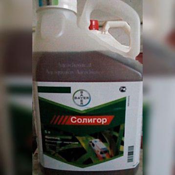 Фунгицид Солигор (Байер) 100мл 200грн для газона от грибковых болезней