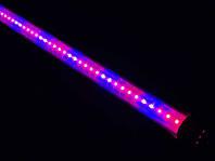 Лампа для фитоосвещения Т8 SL-10F 10W G13 220V (fito spectrum led) Код.58823