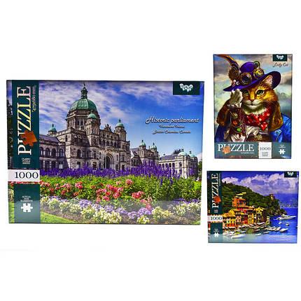 Классический пазл на 1000 элементов (9 серия) Danko toys (10 шт в упаковке), фото 2