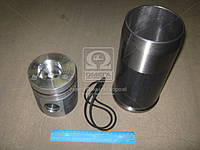 Гильзо-комплект Д 260,Д 245 ЕВРО-2 (ГП-Mol) (гр.С) (гильза 245 мм) (МОТОРДЕТАЛЬ) (арт. 260-1000104-А)