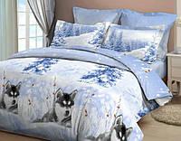 Комплект постельного белья Хаски 2,  бязь, разные размеры семейный