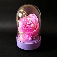 Роза в колбе. Вечный цветок под стеклом
