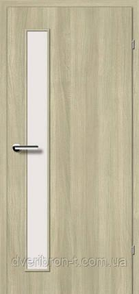 Двері Брама 2.2 в'яз скандинавський, фото 2