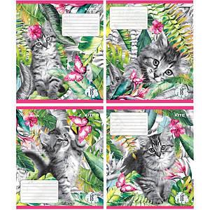 Тетрадь школьная Kite Rachael Hale 18 листов в линию набор 4 штуки