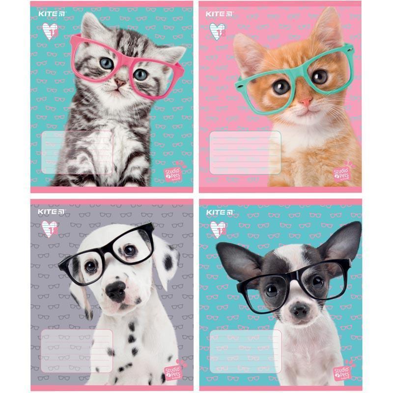 Тетрадь школьная Kite Studio Pets 18 листов в линию набор 4 шт