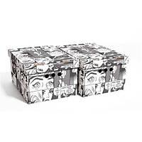 Набор картонных ящиков для хранения А4, комикс 2шт