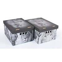 Набор картонных ящиков для хранения А4, Safari  2шт