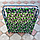 Раскладушка «Эконом», фото 5