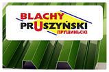 "Профнастил Т 10 "" Blachy Pruszynski "" RAL 6005 - PE 0,45 мм MARCHEGALIA, фото 6"