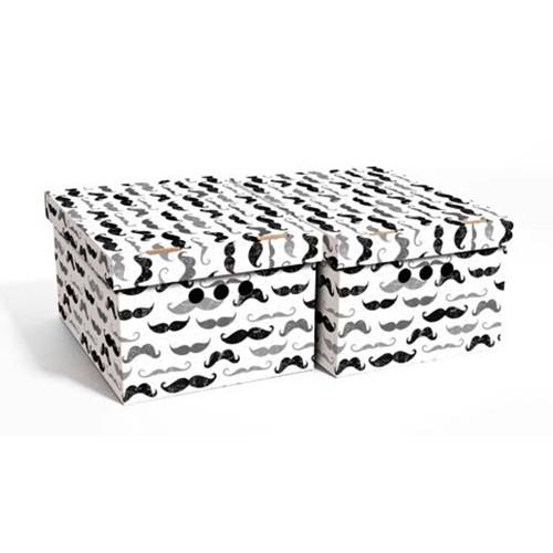 Набор картонных ящиков для хранения А4, усы 2шт