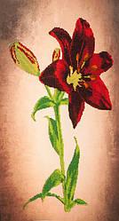 Вышивка бисером Волшебная страна Красная лилия (FLF038) 35 х 45 см