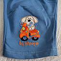 Детские трикотажные штаны голубые р. 68-98 см (Nicol, Польша), фото 2