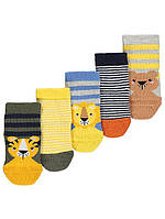 Носки для новорожденного на рост 56-68 George Джордж (Англия) Поштучно