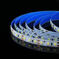 Светодиодная лента smd 2835 120led/м 12v ip20 белый премиум на синем термоскотче