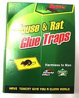 Клеева ловушка для вилову гризунів та комах 17*26   TOMCAT