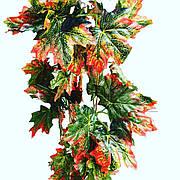 Искусственная лиана.Лиана осенняя с кленовыми листьями.