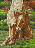 Набор для вышивки крестом Кони. Размер: 18,5*25 см