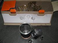 Гильзо-комплект ГАЗ 2410,3302 (ГП+Палец+ст.кольца), фирм.упак. М/К (покупной ГАЗ) (арт. ДМ.24.1000114)
