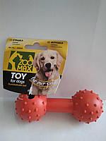 Іграшка резинова Гантель пищалка з шипами 12см  ZooMax