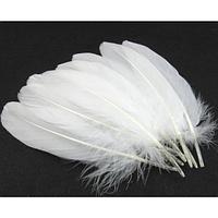 Перья гуся Декоративное перо Белое 15-23см