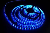 Лента светодиодная  синяя S3528-120B