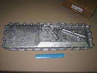 Крышка теплообменника (масляного радиатора) Эталон, ТАТА (RIDER) (арт. 252518173805RD)