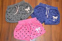Спортивные Трикотажные шортики для девочек ,размеры 134-146 см,фирма S&D.Венгрия